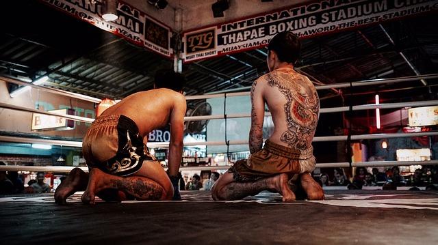 Box je vhodný sport pro přípravu hokejisty. Budete potřebovat jen chránič zubů a boxerské rukavice.